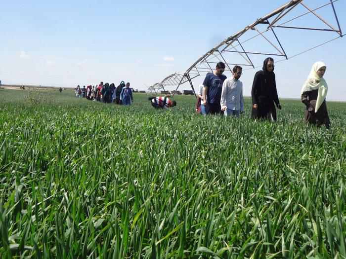 بیش از شش هزار هکتار از اراضی کشت و صنعت مغان به سامانه آبیاری تحت فشار مجهز شد