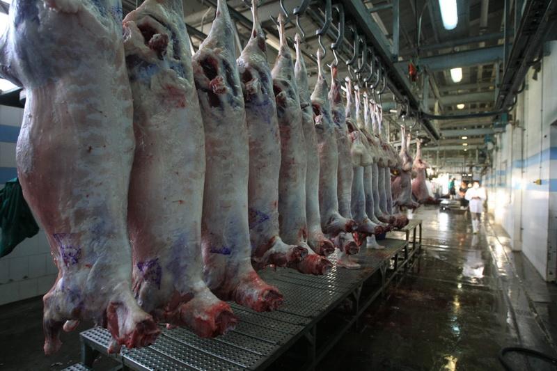 مجتمع گوشت صنعتی اردبیل و مسائل حاشیه ای آن